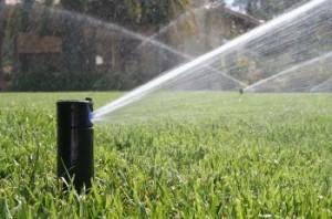 50_Irrigation_001_t670